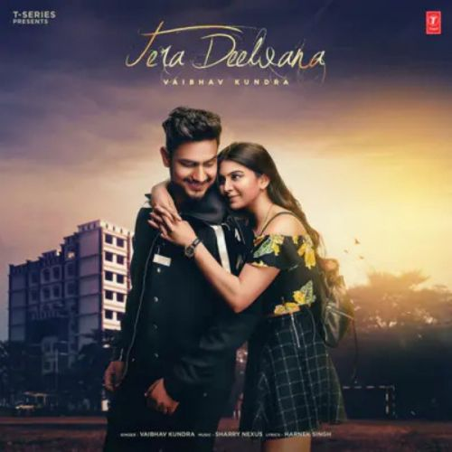 Tera Deewana Vaibhav kundra mp3 song download, Tera Deewana Vaibhav kundra full album mp3 song