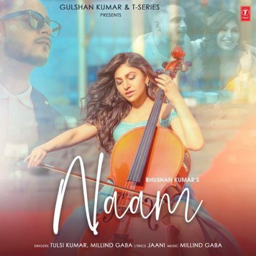 Naam Tulsi Kumar, Milind Gaba mp3 song download, Naam Tulsi Kumar, Milind Gaba full album mp3 song