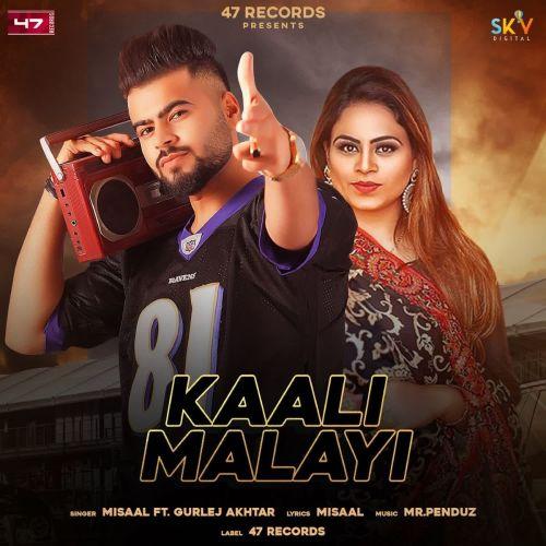 Kaali Malayi Gurlez Akhtar, Misaal mp3 song download, Kaali Malayi Gurlez Akhtar, Misaal full album mp3 song