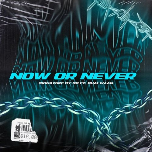 Now Or Never By Bhalwaan full mp3 album