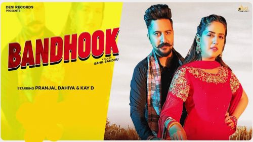 Bandhook Mahi Panchal, Tarun Panchal mp3 song download, Bandhook Mahi Panchal, Tarun Panchal full album mp3 song