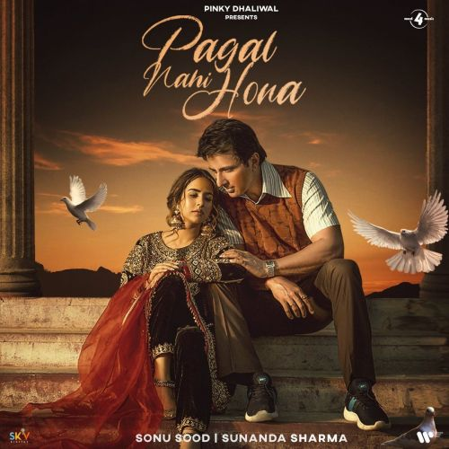 Pagal Nahi Hona Sunanda Sharma mp3 song download, Pagal Nahi Hona Sunanda Sharma full album mp3 song