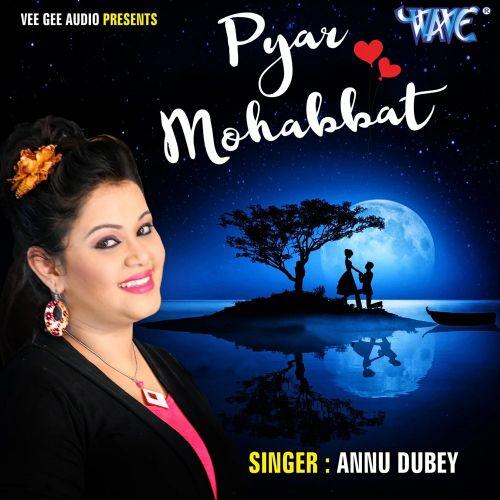 Tum Mere Baad Mohabbat Ko Taras Jaoge Anu Dubey mp3 song download, Tum Mere Baad Mohabbat Ko Taras Jaoge Anu Dubey full album mp3 song