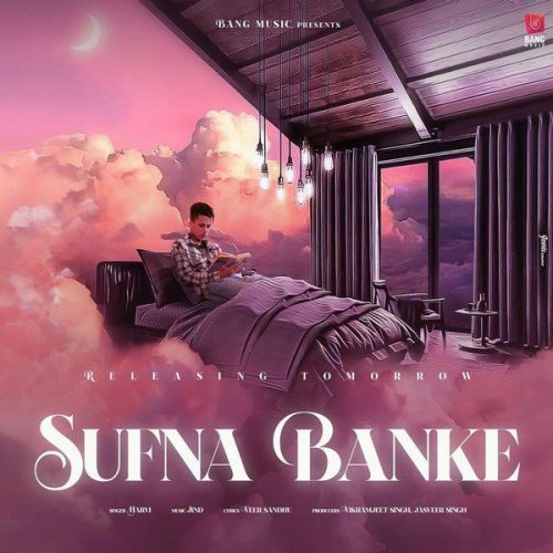 Sufna Banke Harvi mp3 song download, Sufna Banke Harvi full album mp3 song